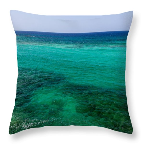 Turks Turquoise Throw Pillow by Chad Dutson