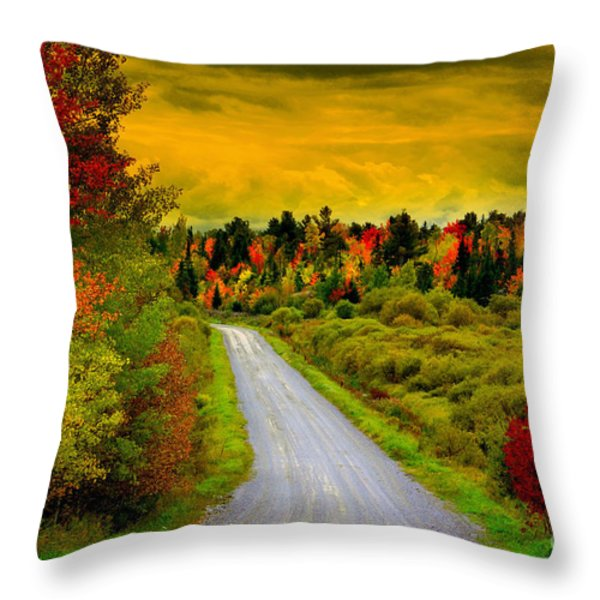 Turn Left Heaven Throw Pillow by Andrew Lorimer