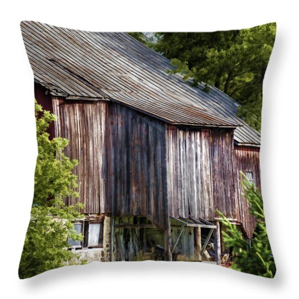 Turn Your Face To The Sun Throw Pillow by Joan Carroll