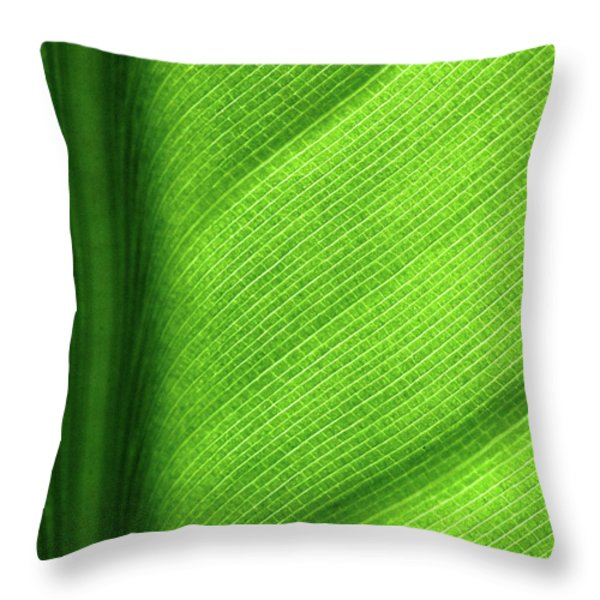 Turning A New Leaf Throw Pillow by Rona Black