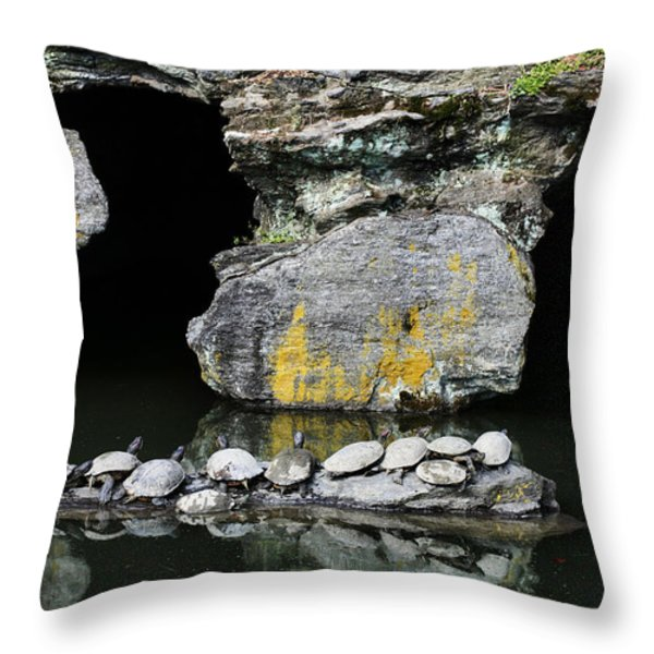 Turtle Caves Throw Pillow by JC Findley
