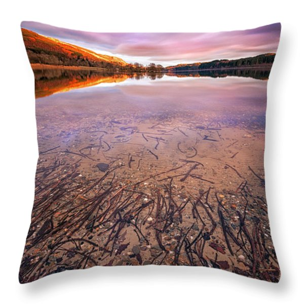 Twigs And Leaves  Throw Pillow by John Farnan