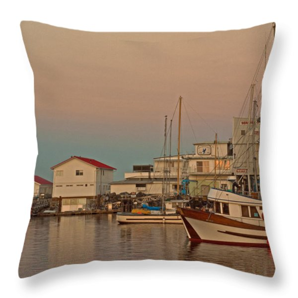 Twilight Throw Pillow by Randy Hall