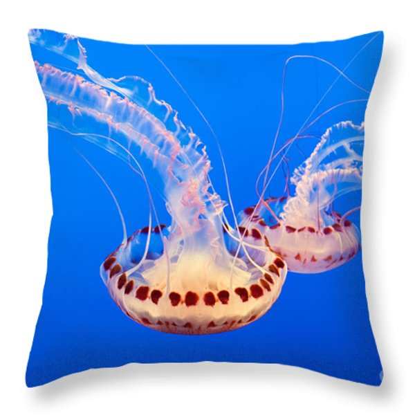 Twin Dancers - Large Colorful Jellyfish Atlantic Sea Nettle Chrysaora Quinquecirrha  Throw Pillow by Jamie Pham