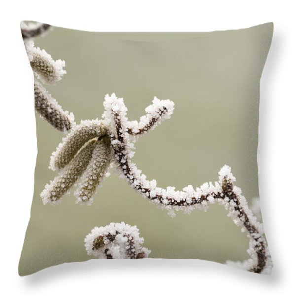 Twisted Frost Throw Pillow by Anne Gilbert