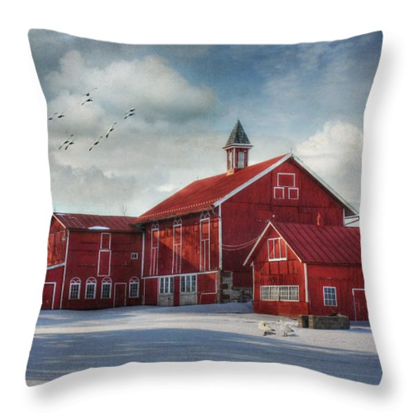 Two By Two Throw Pillow by Lori Deiter