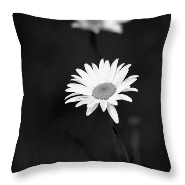 Two Daisies Throw Pillow by Sabrina L Ryan