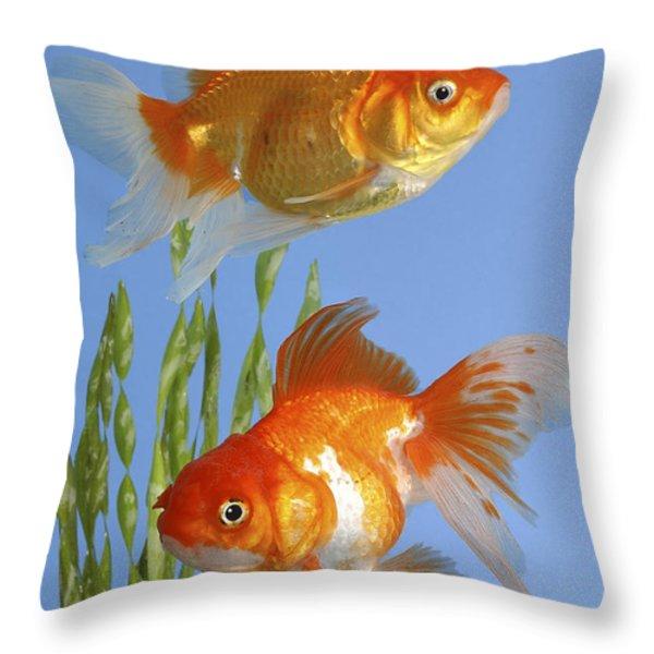 Two Fish Fs101 Throw Pillow by Greg Cuddiford