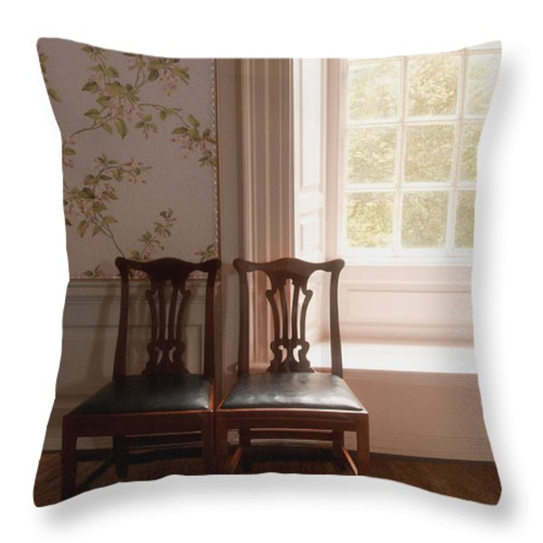 Two Throw Pillow by Margie Hurwich