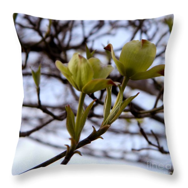Two Of  A Kind Throw Pillow by Andrea Anderegg