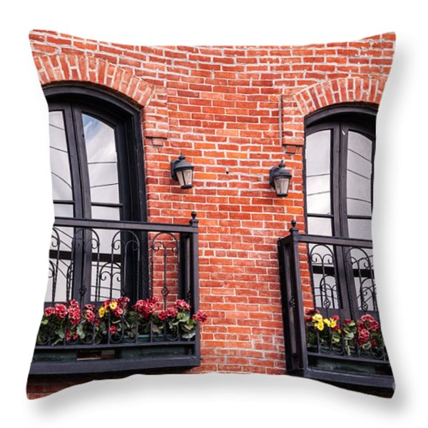 Two Pair Of French Doors Throw Pillow by Sue Smith