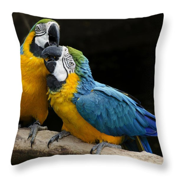 Two Parrots Squawking Throw Pillow by Dave Dilli
