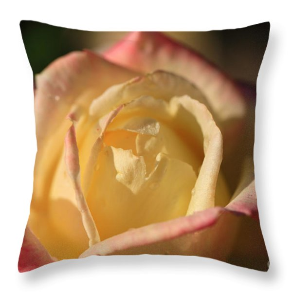 Two Tone Throw Pillow by Cheryl Young