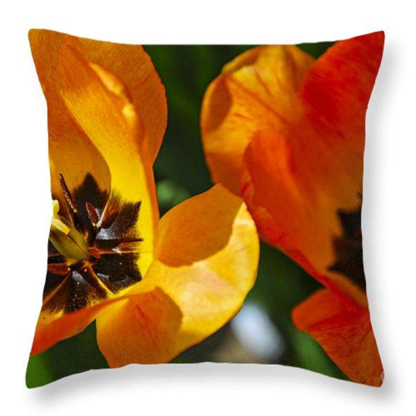 Two tulips Throw Pillow by Elena Elisseeva