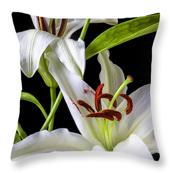 Two wonderful lilies  Throw Pillow by Garry Gay