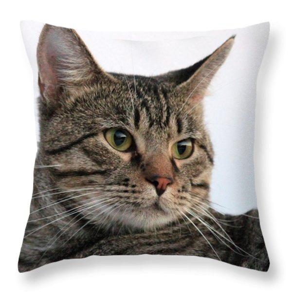 Tyson Throw Pillow by Lorri Crossno