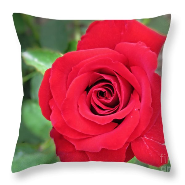 Unconscious Beauty Throw Pillow by Ella Kaye Dickey