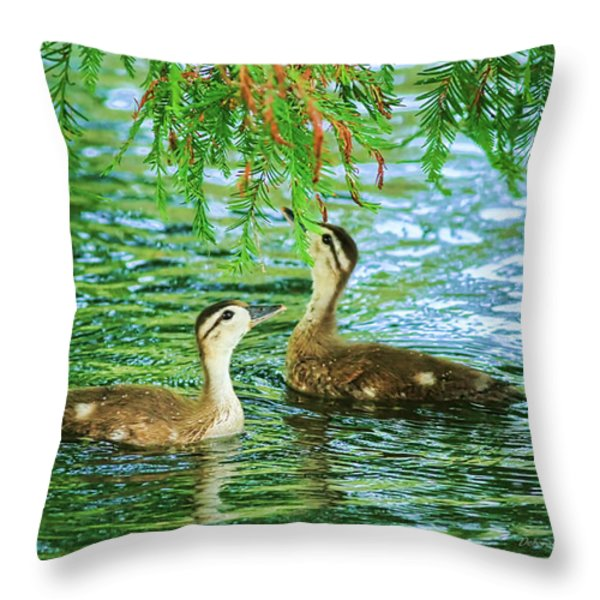 Under The Canopy Throw Pillow by Deborah Benoit