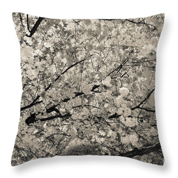 Under The Cherry Tree - Bw Throw Pillow by Hannes Cmarits