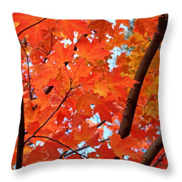 Under the Orange Maple Tree Throw Pillow by Rona Black
