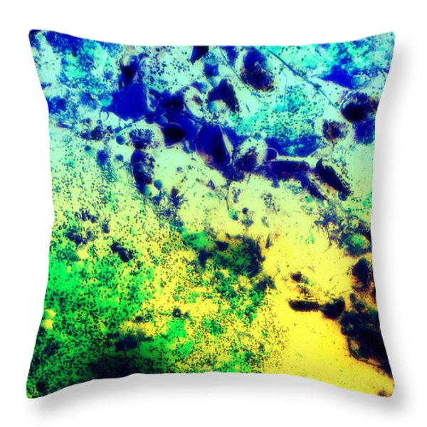 under water Throw Pillow by Hilde Widerberg