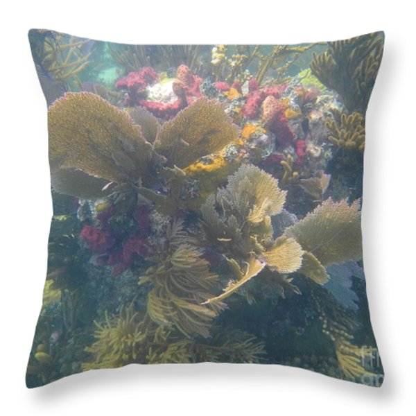 Underwater Colors Throw Pillow by Adam Jewell