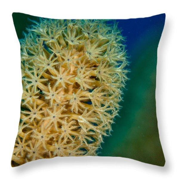 Underwater Gorgonian Throw Pillow by Jean Noren
