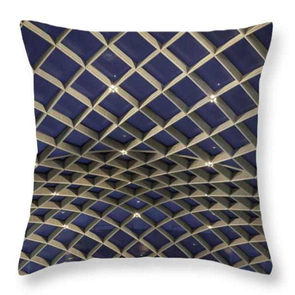 Undulating Throw Pillow by Lynn Palmer