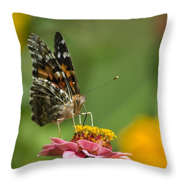 Unforgettable Lady Butterfly Throw Pillow by Christina Rollo