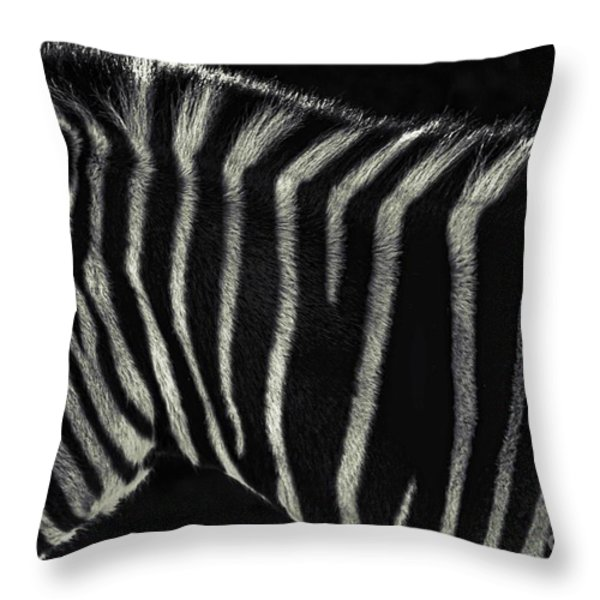 Unique Similarity Throw Pillow by Andrew Paranavitana