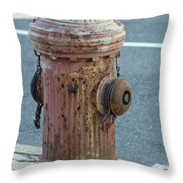 Unsung Hero Throw Pillow by Lisa  Phillips