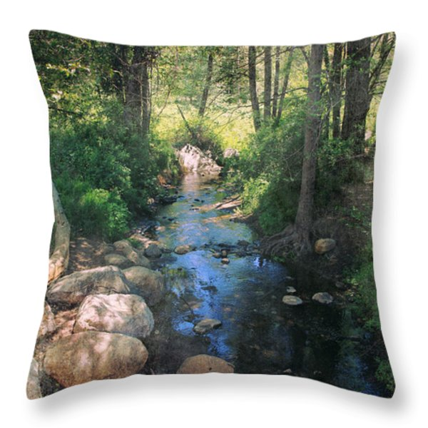 Until I Loved You Throw Pillow by Laurie Search