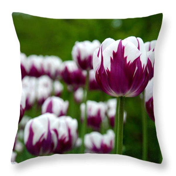 Unusual Tulips Throw Pillow by Jennifer Lyon