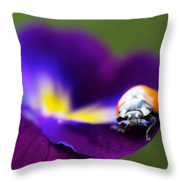Up Close And Personal Throw Pillow by Lisa Knechtel