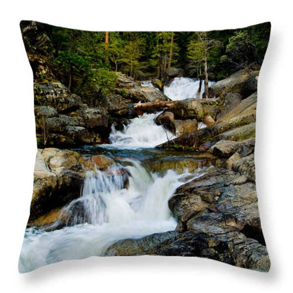 Up the Creek Throw Pillow by Bill Gallagher