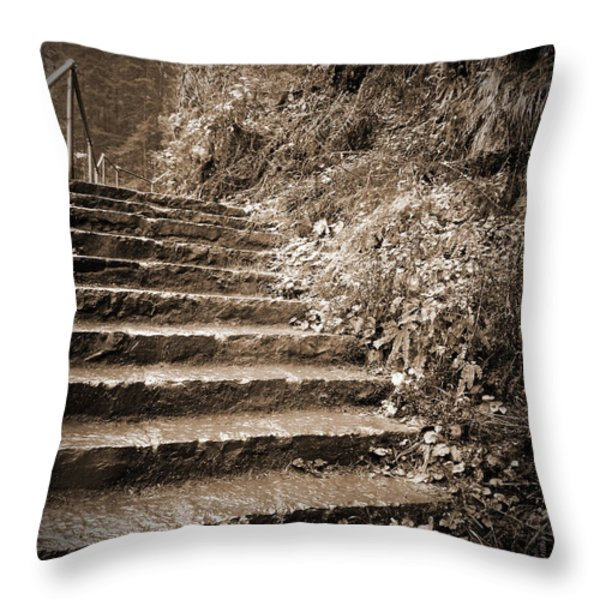 Decorative Pillows At Hobby Lobby : Hobby Lobby Throw Pillows for Sale