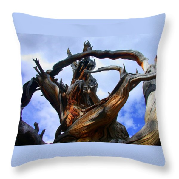 Uprooted Beauty Throw Pillow by Shane Bechler