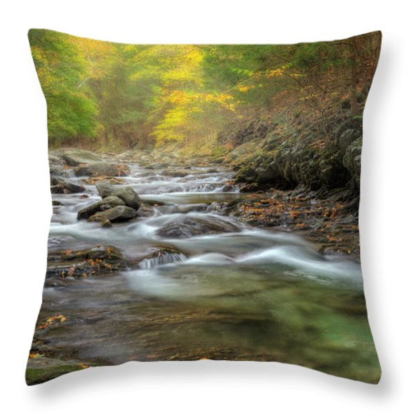 Upstream Fog Throw Pillow by Bill  Wakeley
