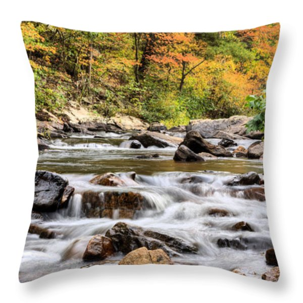 Upstream Throw Pillow by JC Findley