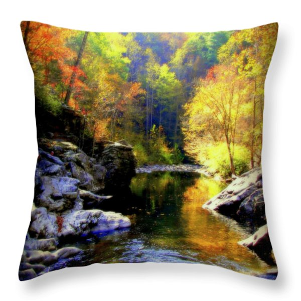 Upstream Throw Pillow by Karen Wiles
