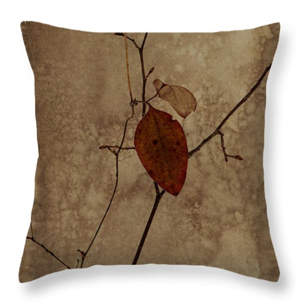 Valentine Wishes Throw Pillow by Ron Jones