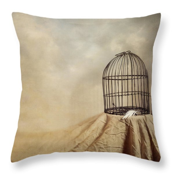 Vanishing Act Throw Pillow by Amy Weiss