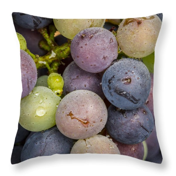 Variation Throw Pillow by Jean Noren