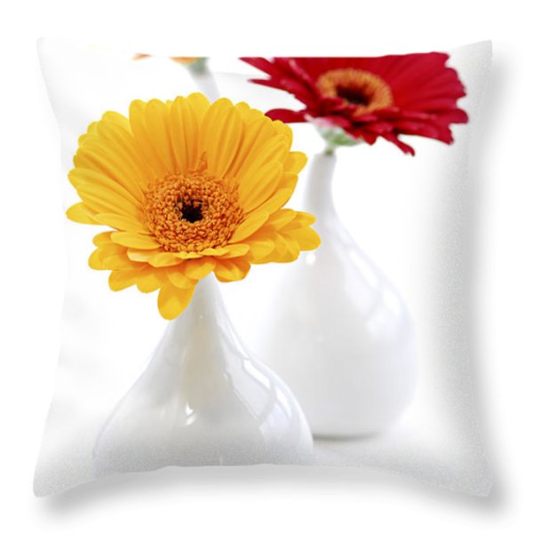 Vases with Gerbera flowers Throw Pillow by Elena Elisseeva