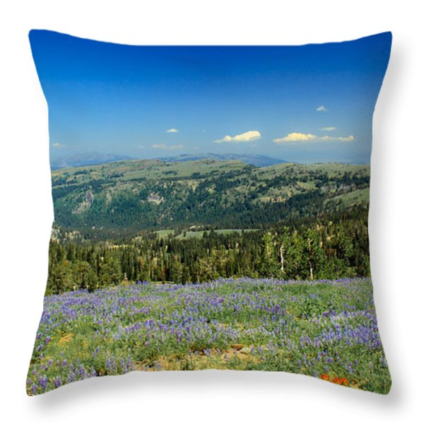 Vast View And Lupine Throw Pillow by Robert Bales