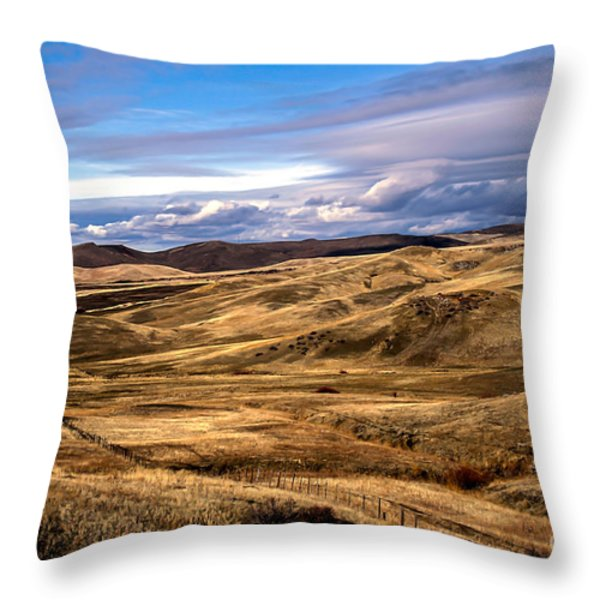 Vast View of the Rolling Hills Throw Pillow by Robert Bales
