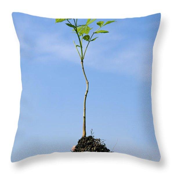 Vegetation Throw Pillow by BERNARD JAUBERT