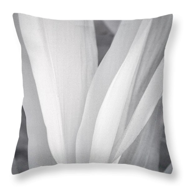 Veil Throw Pillow by Adam Romanowicz