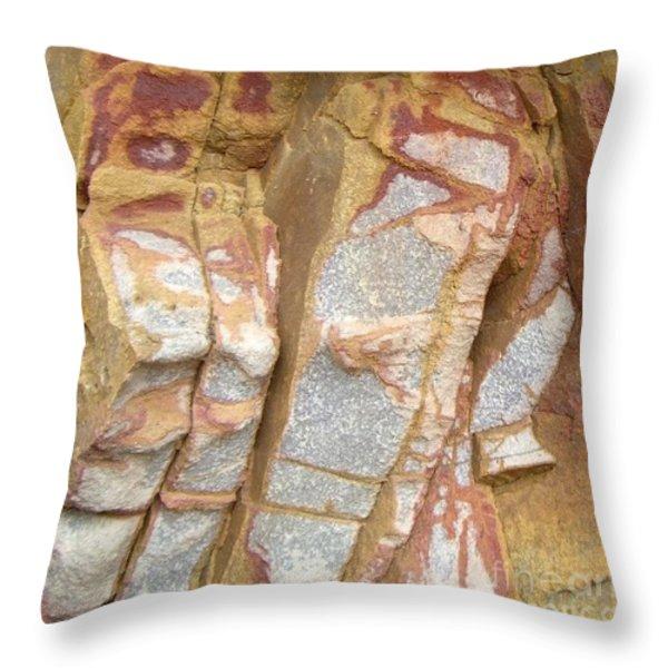Veined Rock Throw Pillow by Barbie Corbett-Newmin