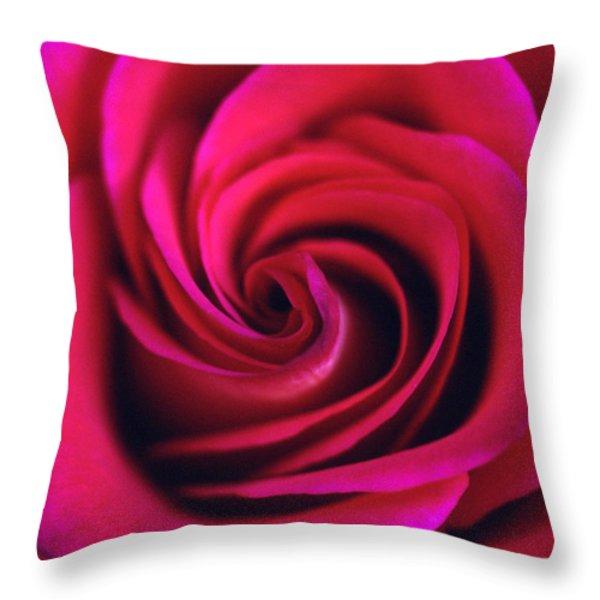 Velvet Rose Throw Pillow by Kathy Yates